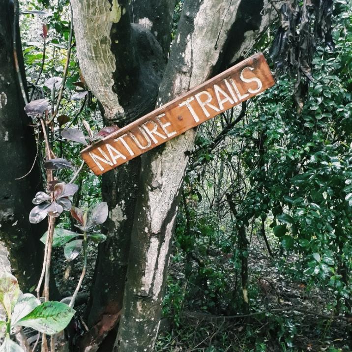 Nature Trail in Karen