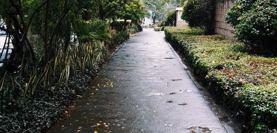 walkway-e1522669072522.jpg
